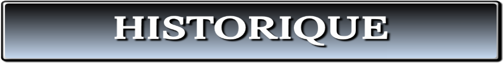 Logo page Historique Badminton Balaze